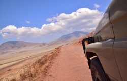Safari Tanzania Offer02